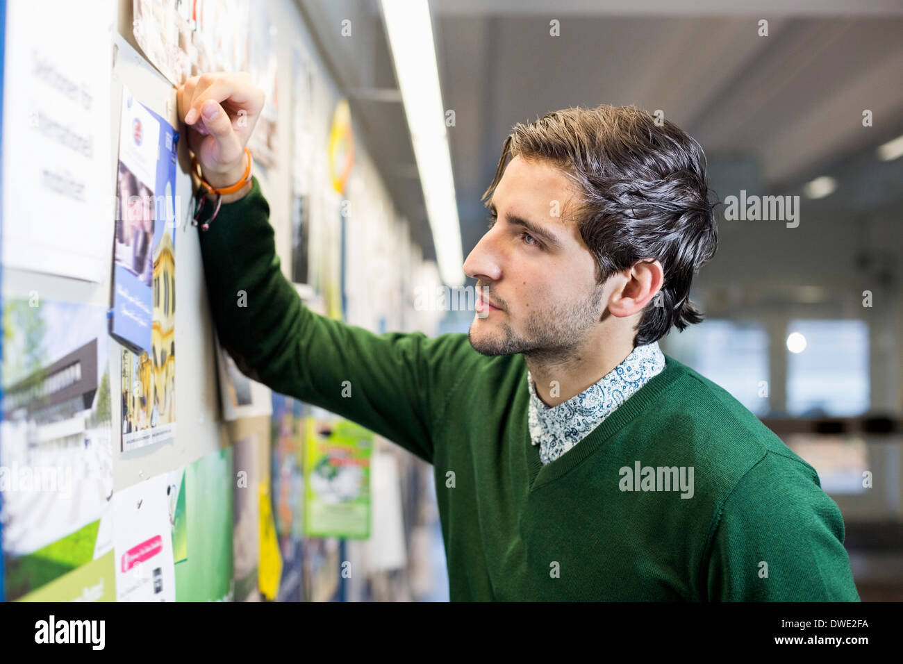 Male student reading notice board in college - Stock Image