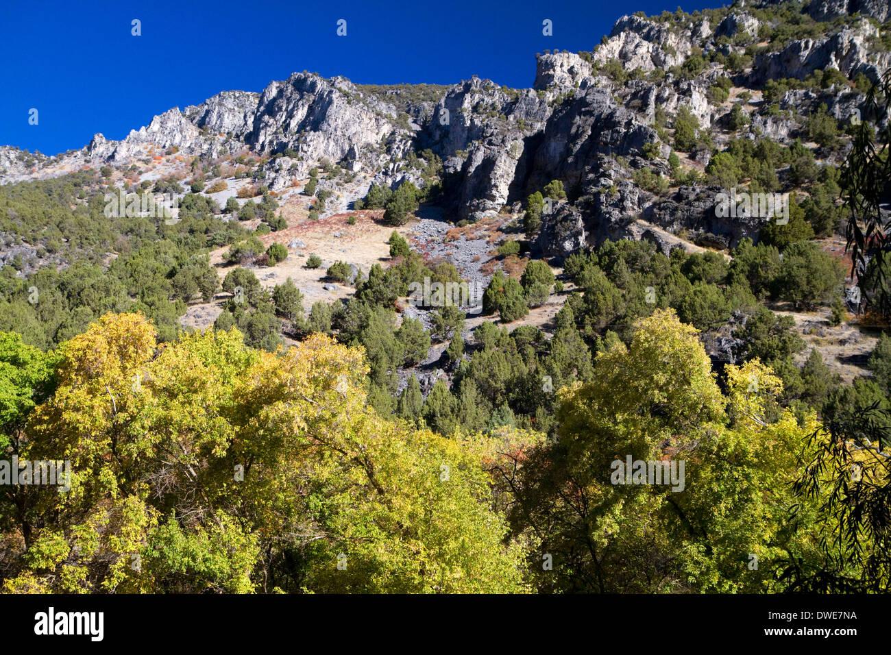 The Bear River Mountains in Logan Canyon, Utah, USA. - Stock Image