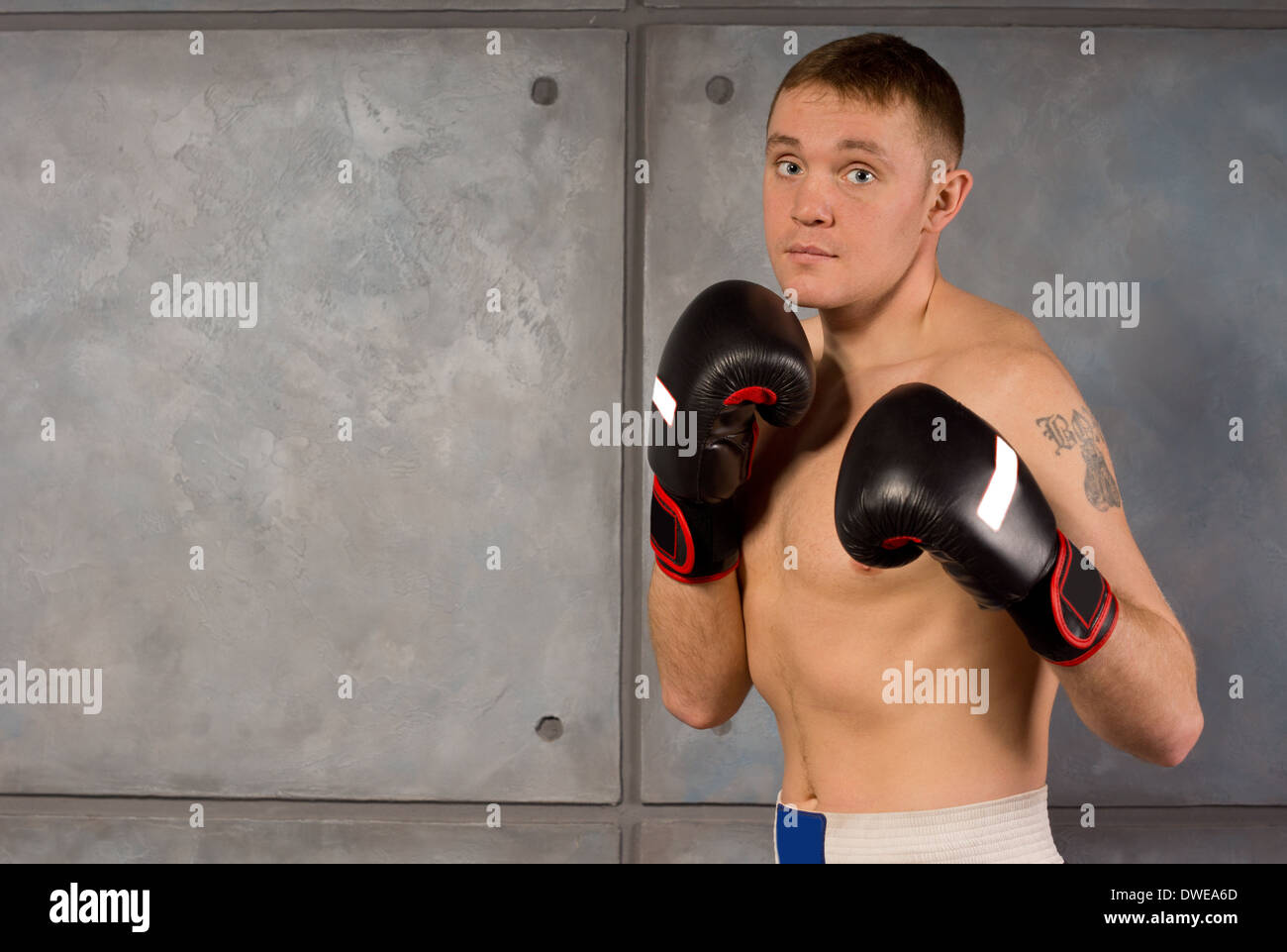 Fit muscular young boxer in training standing on the alert with his gloved fists raised, with copyspace - Stock Image