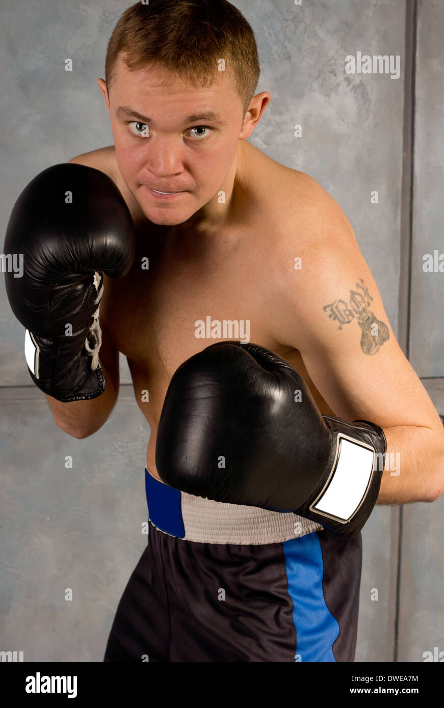 Determined professional young boxer in training leaning in ready to land a punch on his opponent, close up view - Stock Image