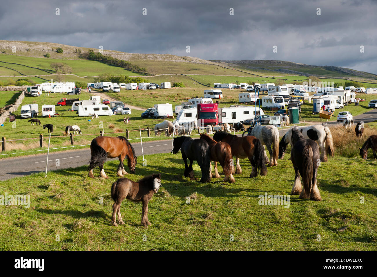 Gypsy camp on Cote Moor, Ravenstonedale, on way to Appleby horse fair in Cumbria - Stock Image