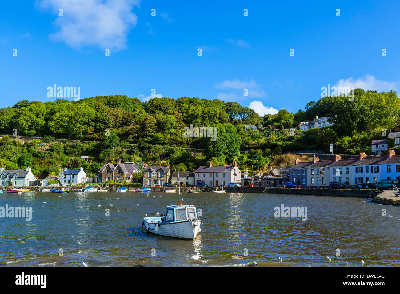 Boats in the harbour in the seaside village of Lower Fishguard, Pembrokeshire, Wales, UK - Stock Image