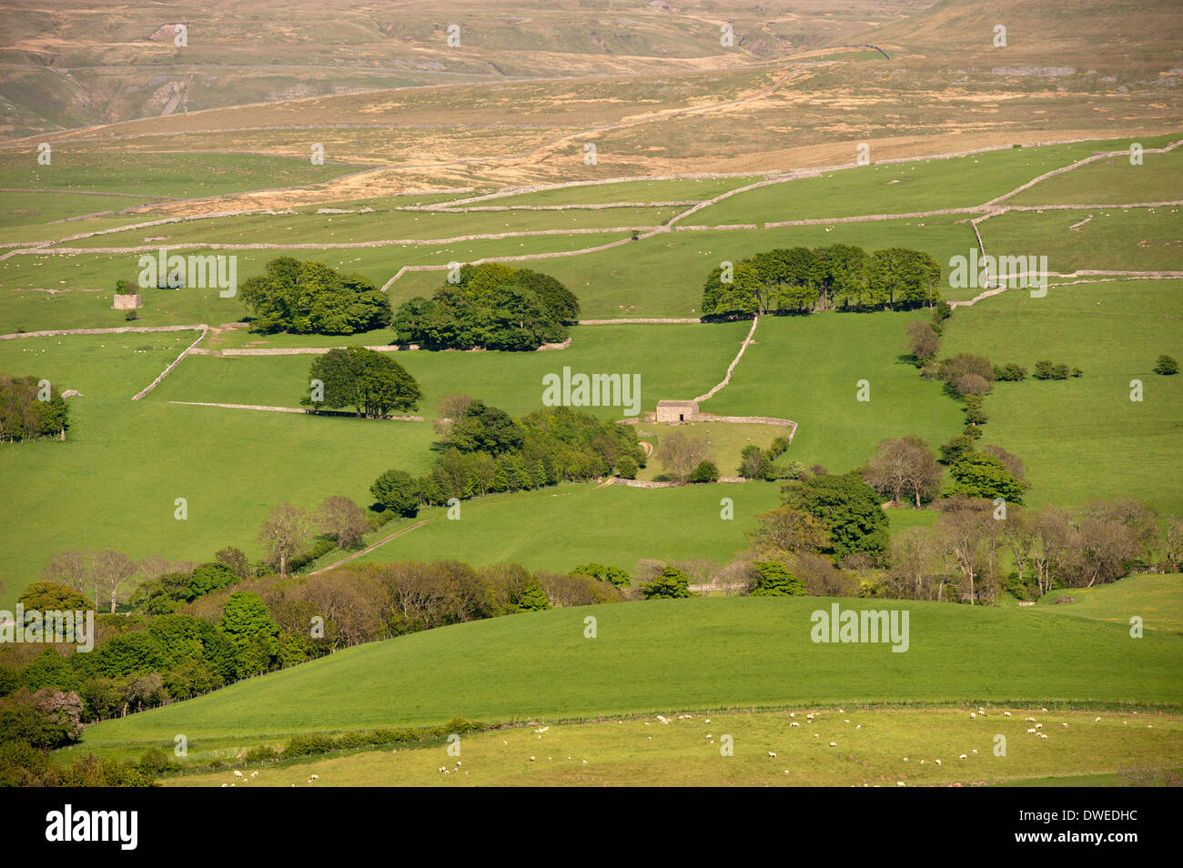 Field patterns in the upper Eden Valley near Kirkby Stephen, Cumbria. - Stock Image