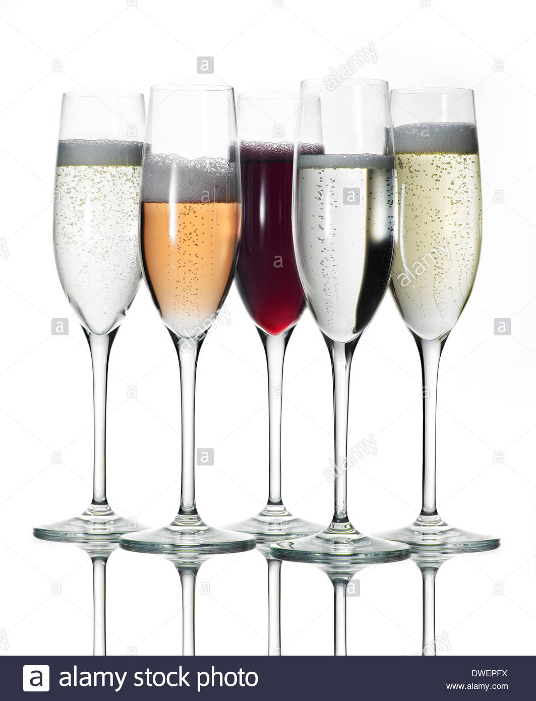 tall stem glasses of variety of bubbly prosecco or champagne shot against white background - Stock Image