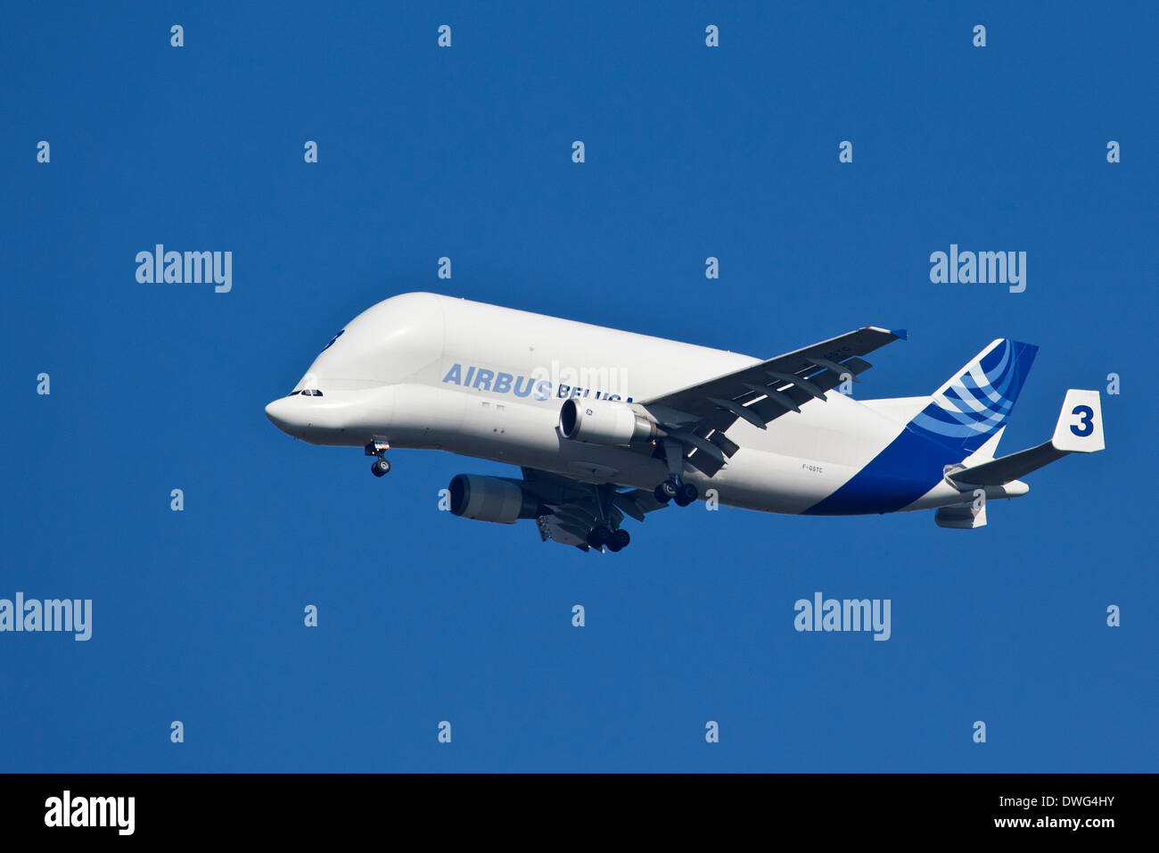 An Airbus Industries Airbus A300-600T super transporter aircraft - Stock Image