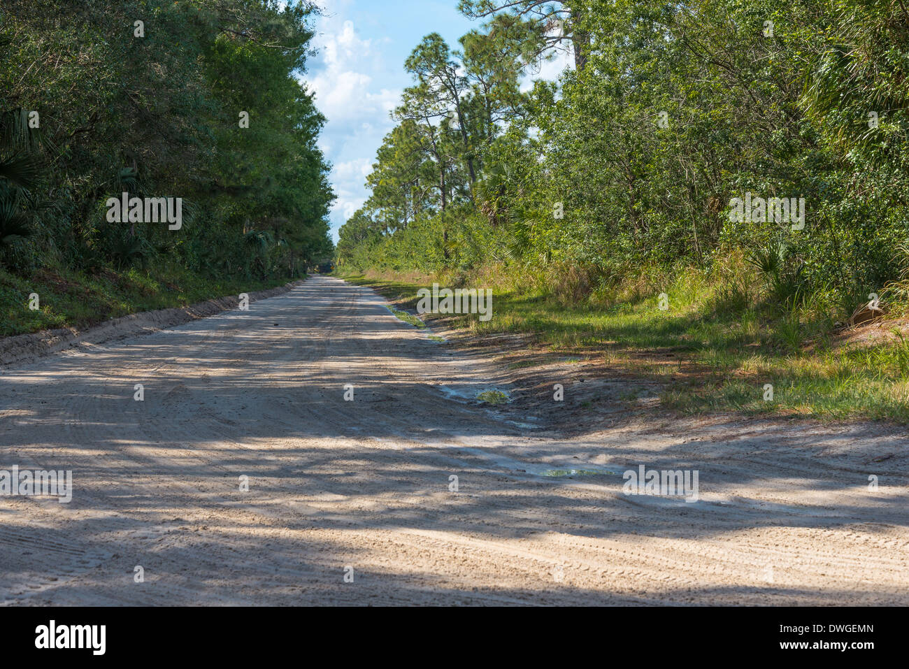 Sunlight and shadows dapple a country roar in Indian River County, Florida, USA. - Stock Image