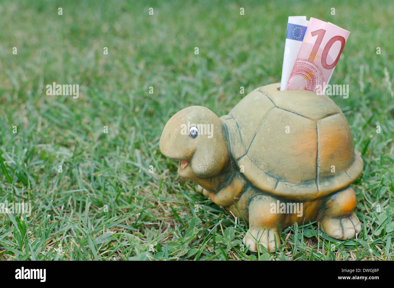 Happy Turtle Piggy Bank with Ten Euro Banknote in the Green Grass - Stock Image
