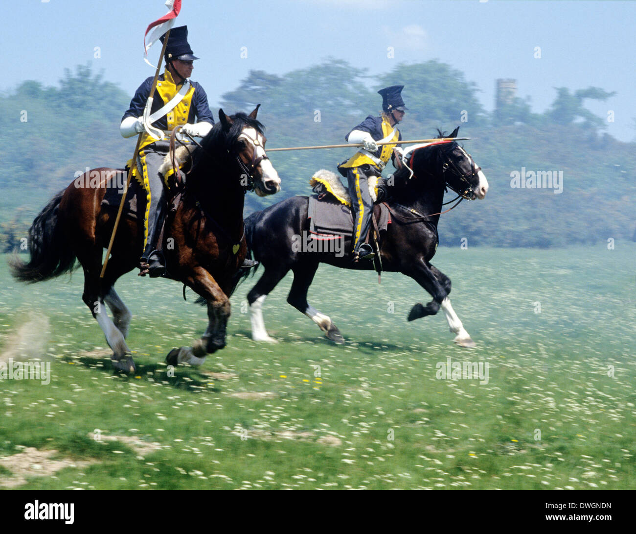 French Napoleonic cavalry, 1815, as deployed at Battle of Waterloo, Chasseurs, historical re-enactment, horses Stock Photo