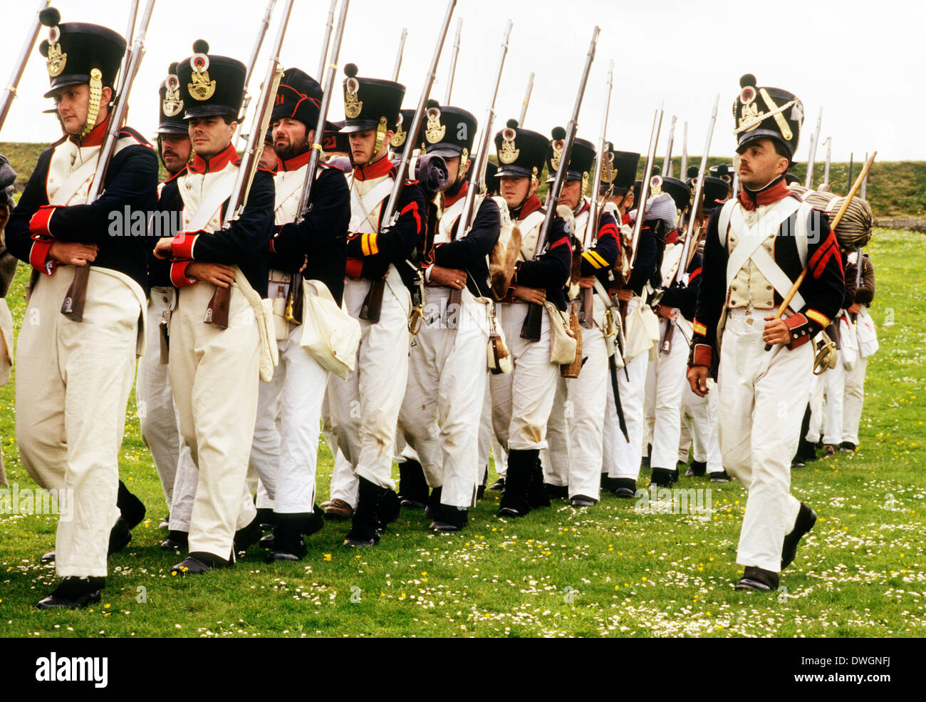 French Napoleonic foot regiment, soldiers with muskets, 1815, as deployed at the Battle of Waterloo, historical re-enactment - Stock Image