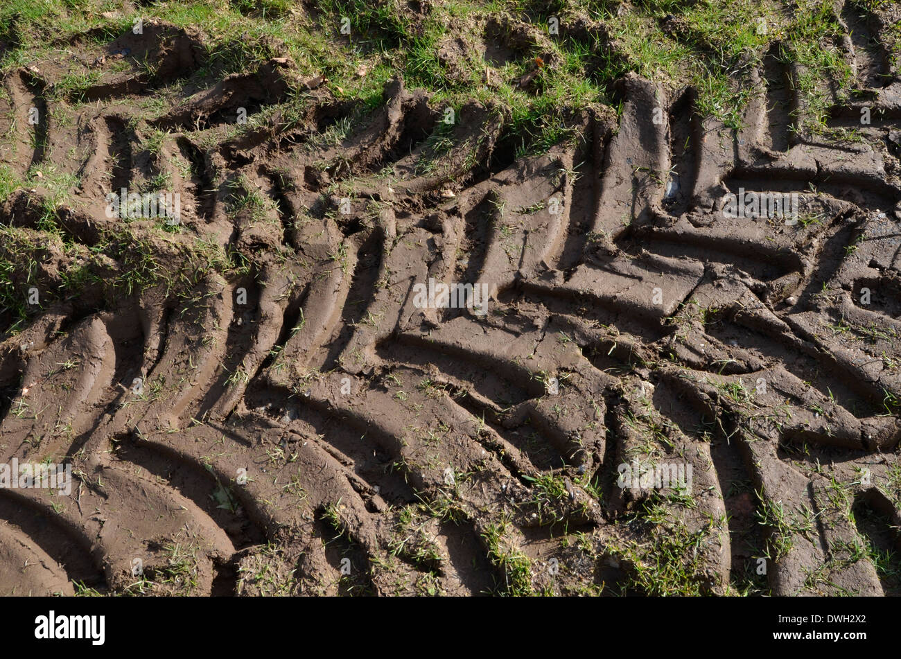 Tractor tyre tracks / impressions in field. - Stock Image