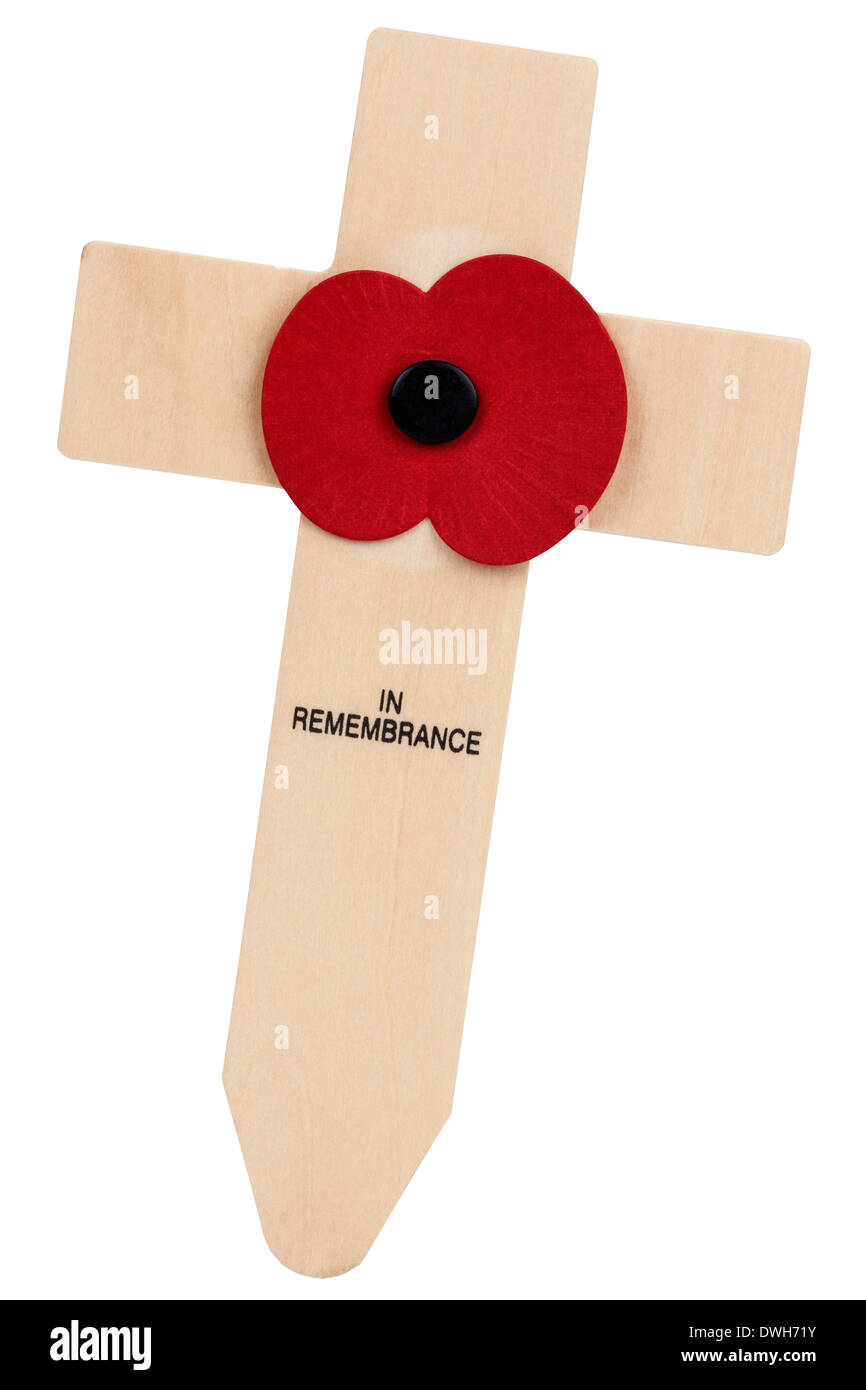 Isolated - Remembrance Day - Stock Image
