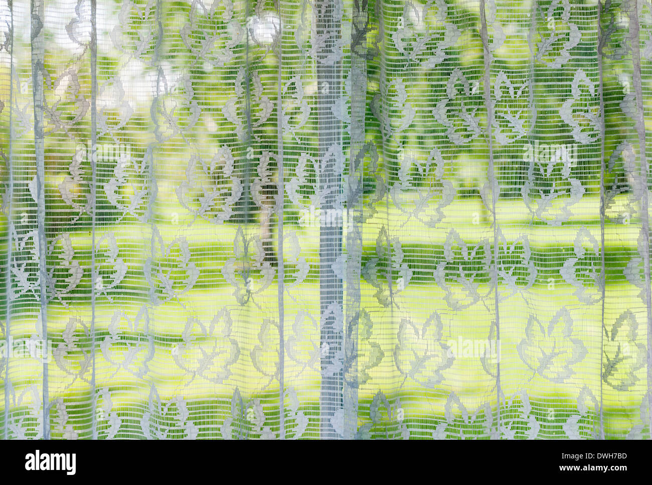 Window with lace curtains looking out to green summer park - Stock Image