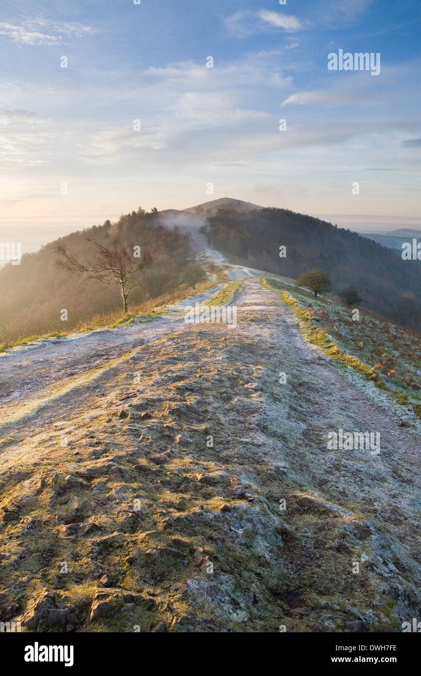 The rocky path between Perseverance Hill and Jubilee Hill on the Malvern Hills, Worcestershire picks up the strong Stock Photo