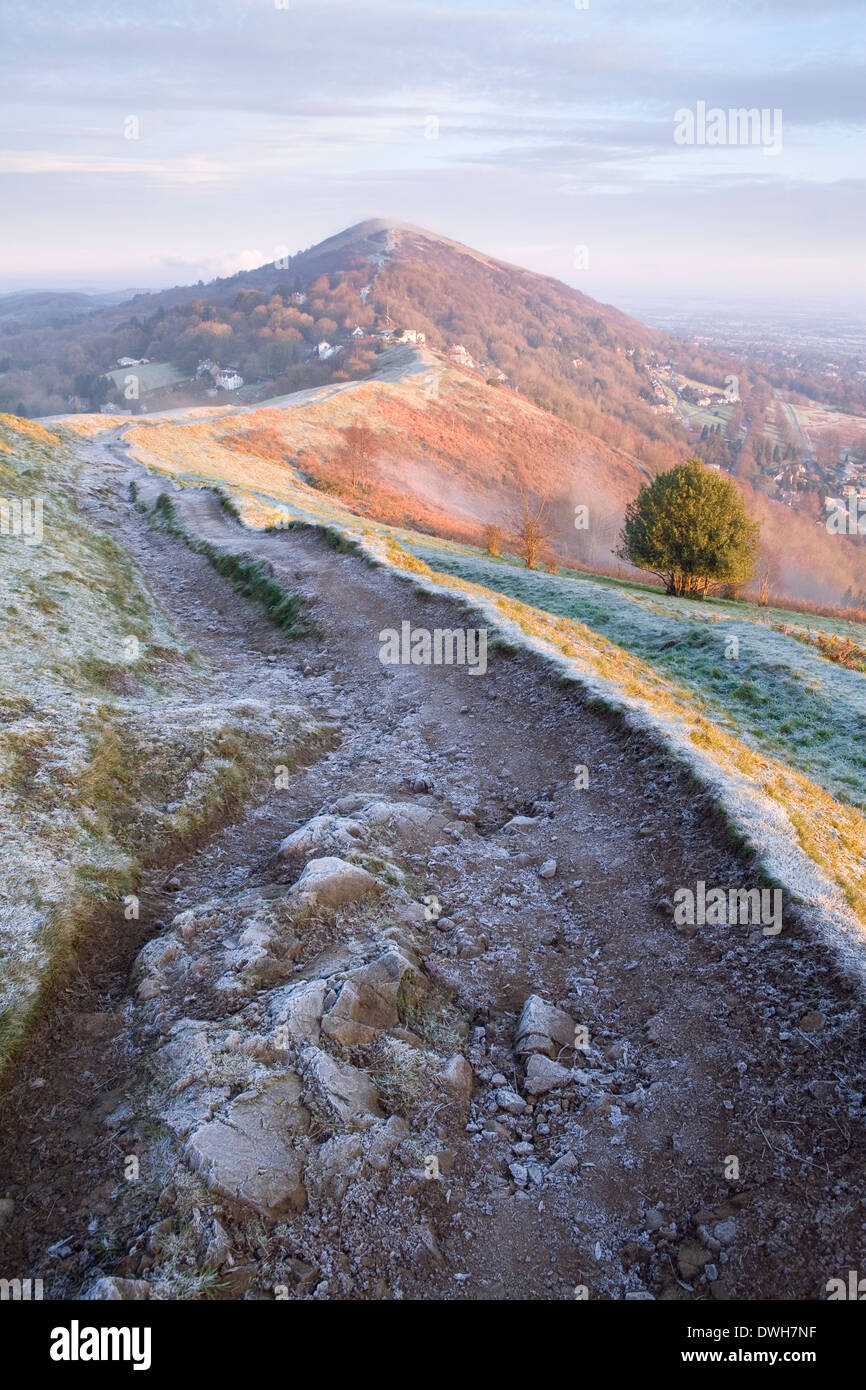 A heavily worn footpath on Perseverance Hill, Malvern Hills, is cast in shadow from the strong light of sunrise. Stock Photo