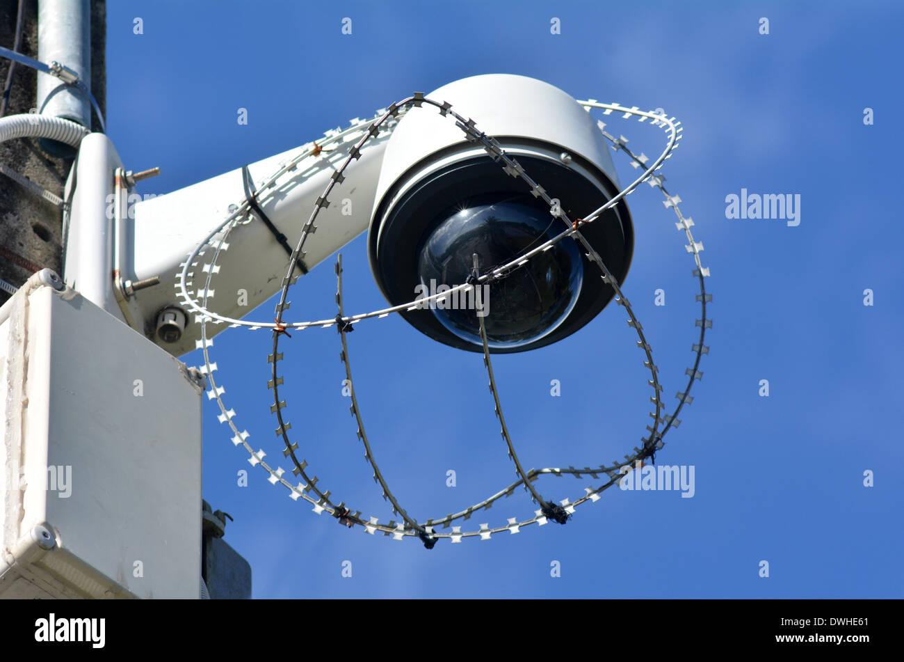 One security surveillance camera protected with barbed wire against vandalism and crime. concept photo of security. - Stock Image