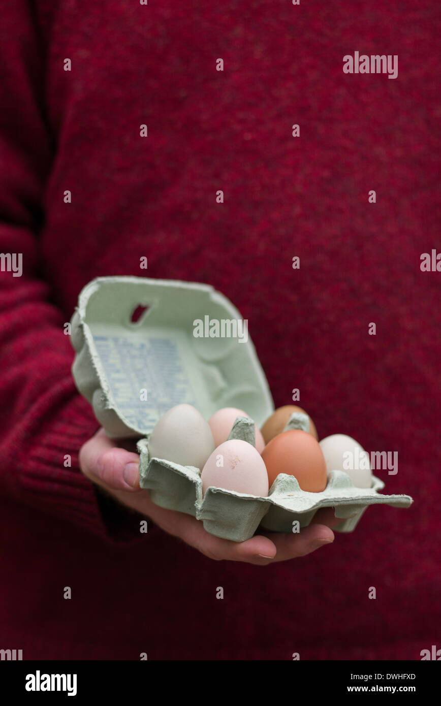 Hand holding an egg box containing free range home produced eggs - Stock Image