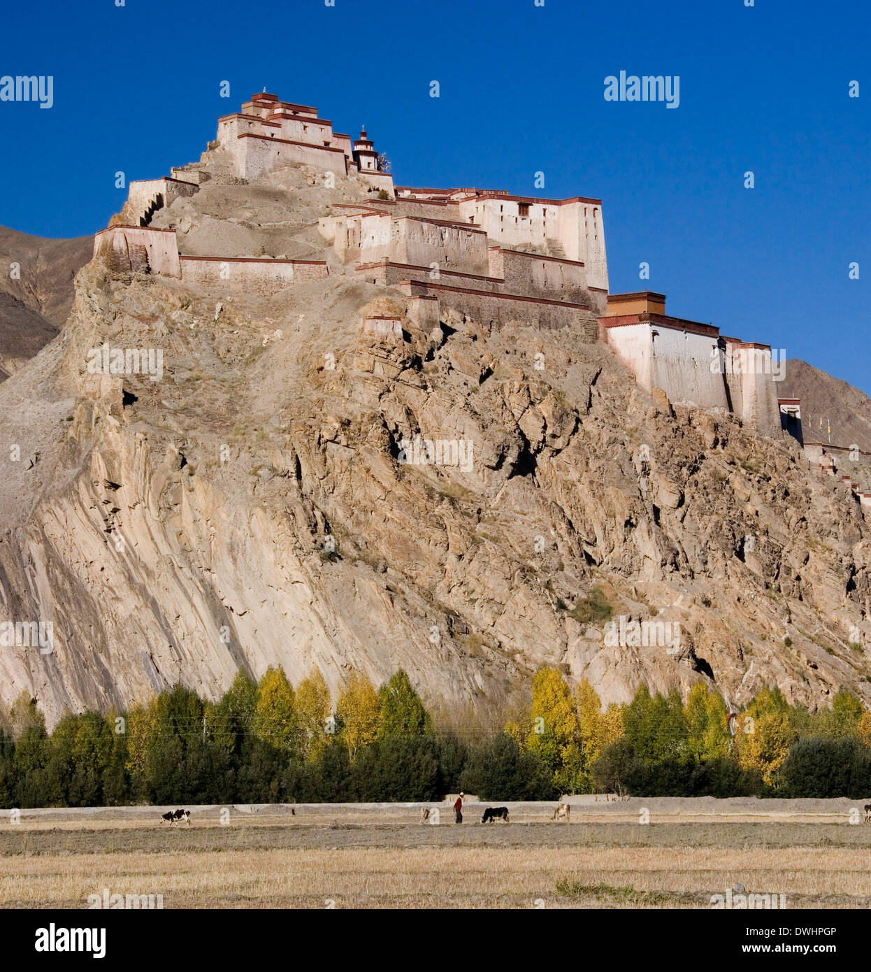 Gyantse Fortress near the town of Gyantse in the Tibet Autonomous Region of China. - Stock Image