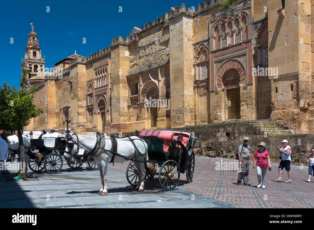 Arab mosque (Cathedral) and horse carriages, Cordoba, Region of Andalusia, Spain; Europe - Stock Image