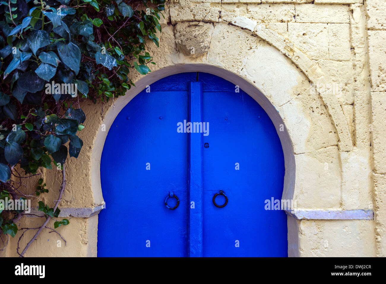 North Africa, Tunisia, Sidi Bou Said. Typical traditional Tunisian door. Detail. Stock Photo
