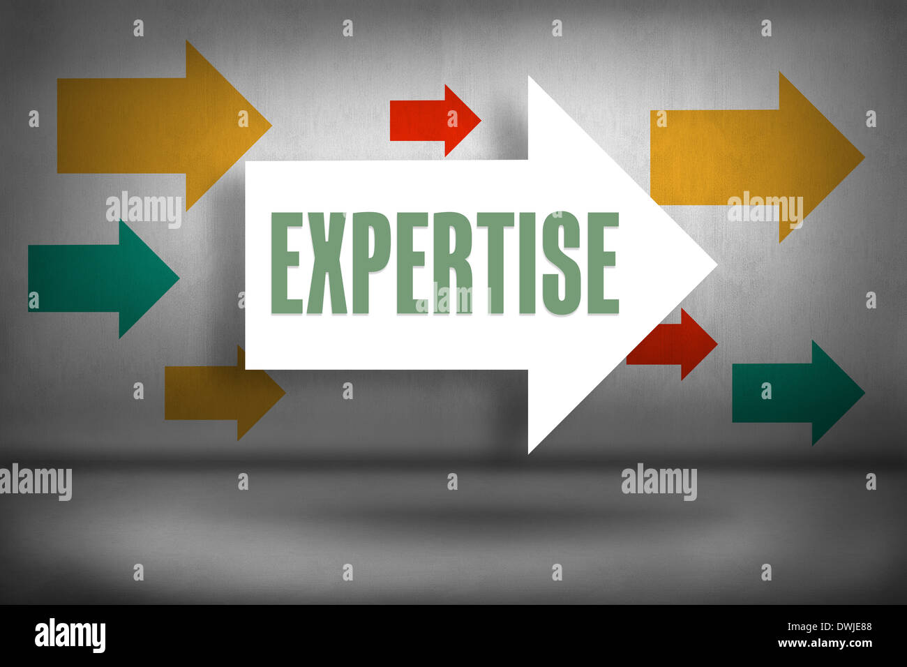 Expertise against arrows pointing - Stock Image