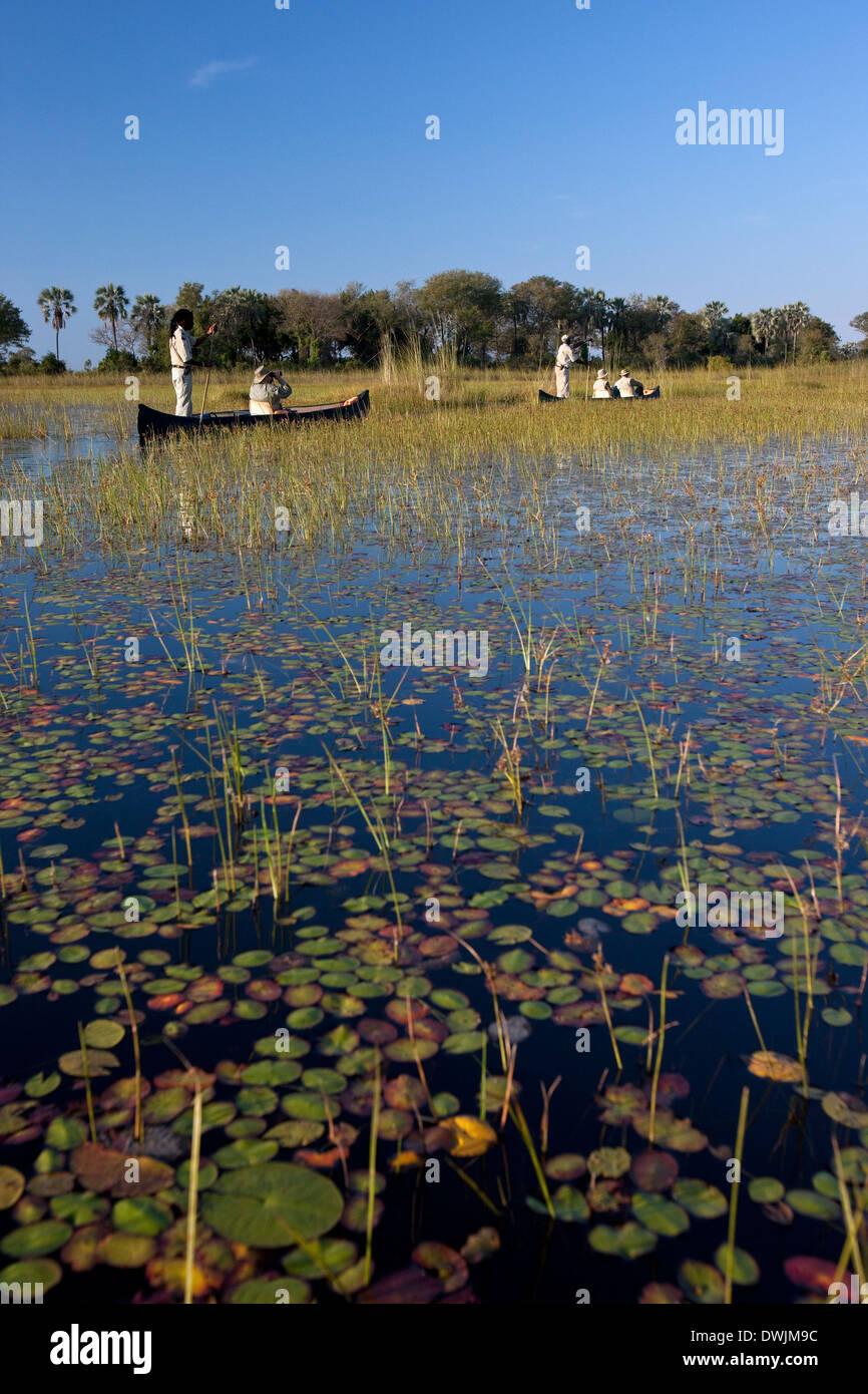 Tourists in moroko (canoes) on the Okavango Delta in Botswana - Stock Image
