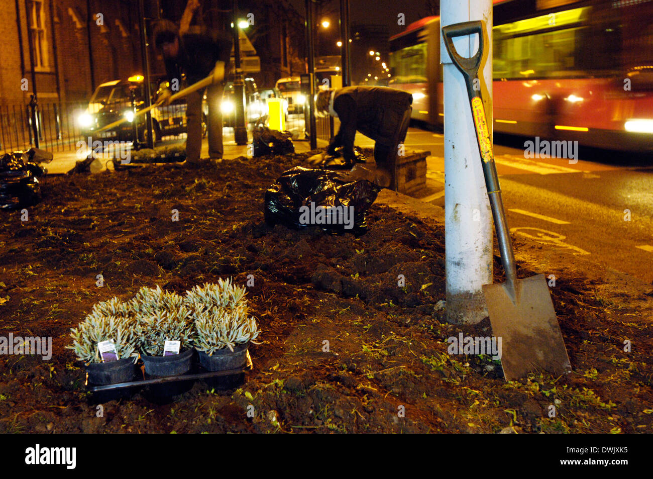 Guerrilla Gardening Stock Photos & Guerrilla Gardening Stock Images ...