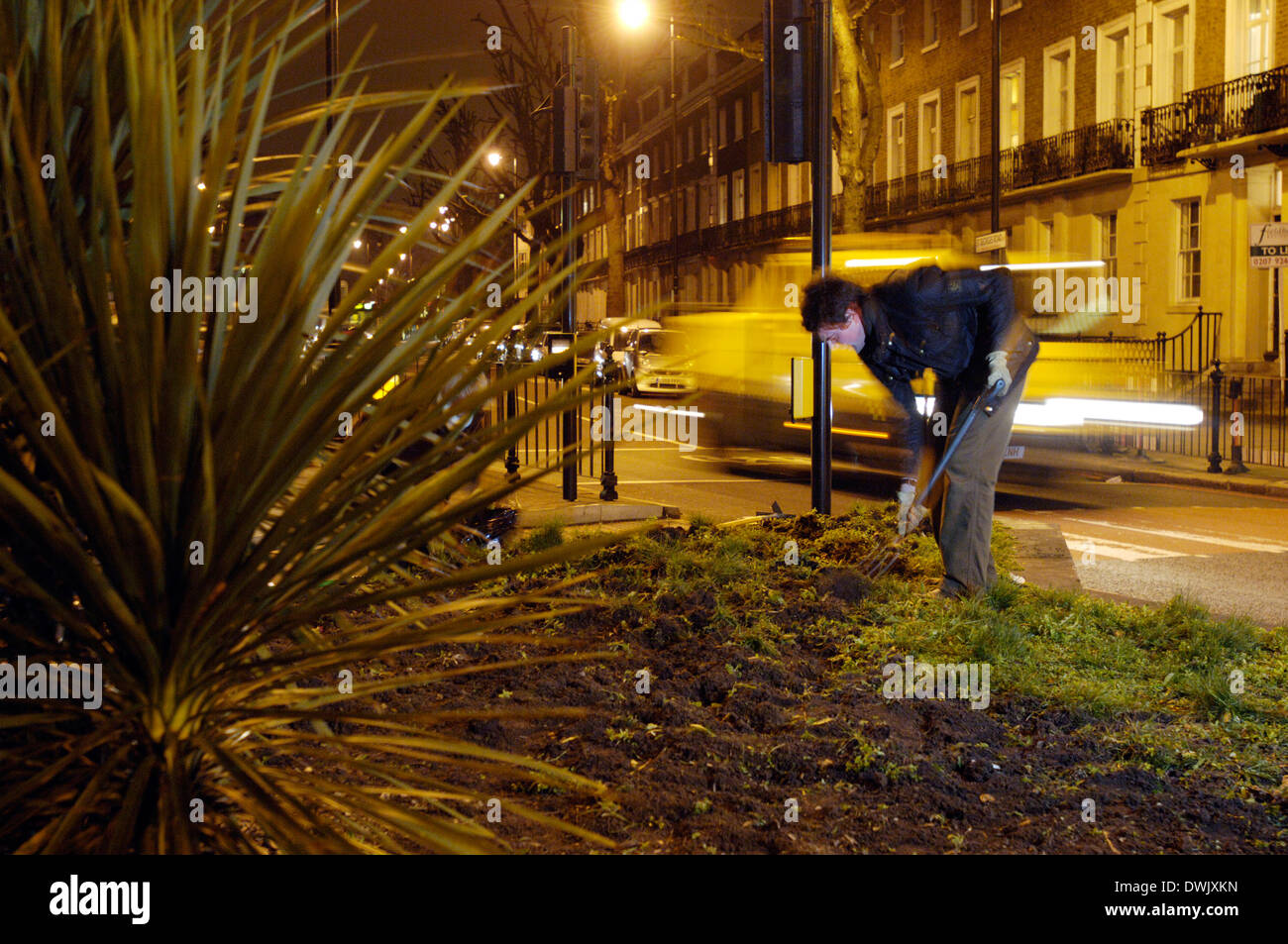 members of guerrilla gardening organisation in action southwark ...