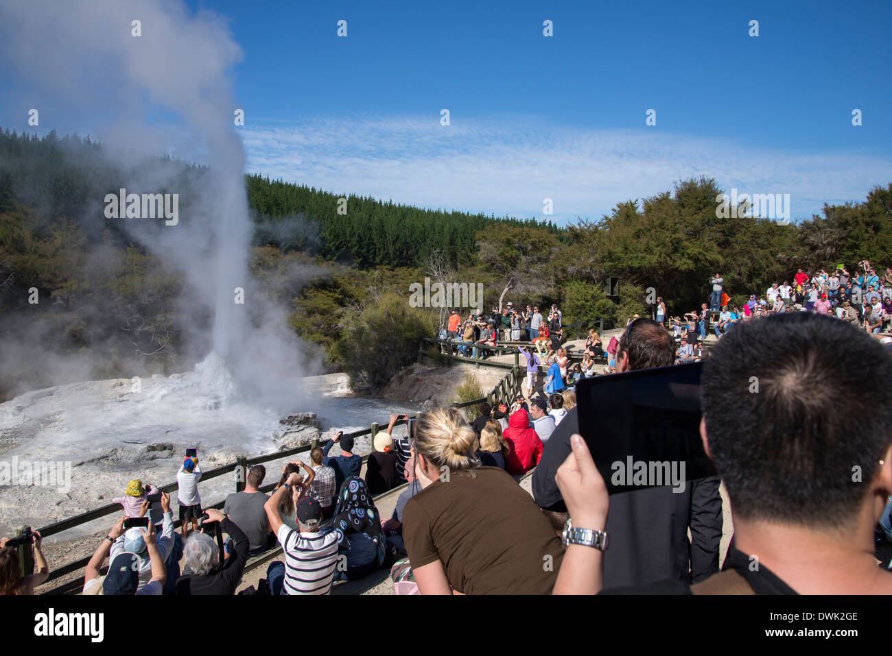 people watching lady knox geyser erupt while taking pictures with cameras and tablets - Stock Image