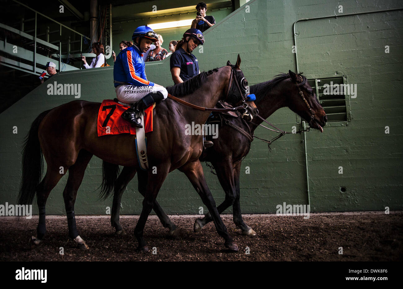 Arcadia, CA, USA. 8th Mar, 2014. Game on Dude, ridden by Mike Smith wins the Santa Anita Handicap (G1) at Santa Stock Photo