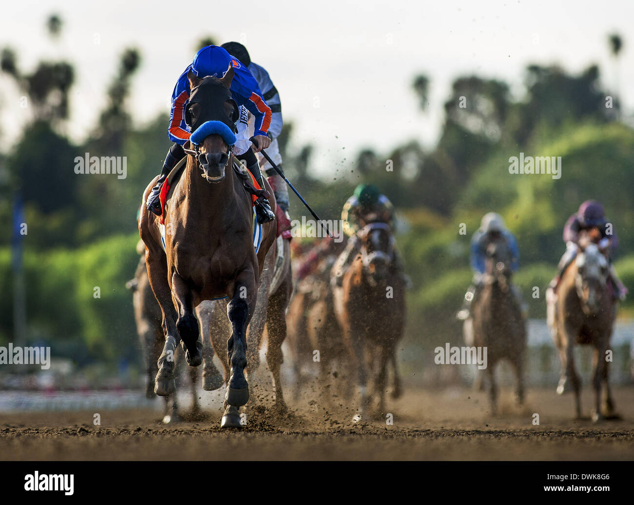 Arcadia, CA, USA. 9th Mar, 2014. Game on Dude, ridden by Mike Smith wins the Santa Anita Handicap (G1) at Santa Anita Park on March 8, 2014 in Arcadia, California © Alex Evers/Eclipse Sportswire/Eclipse/ZUMAPRESS.com/Alamy Live News - Stock Image