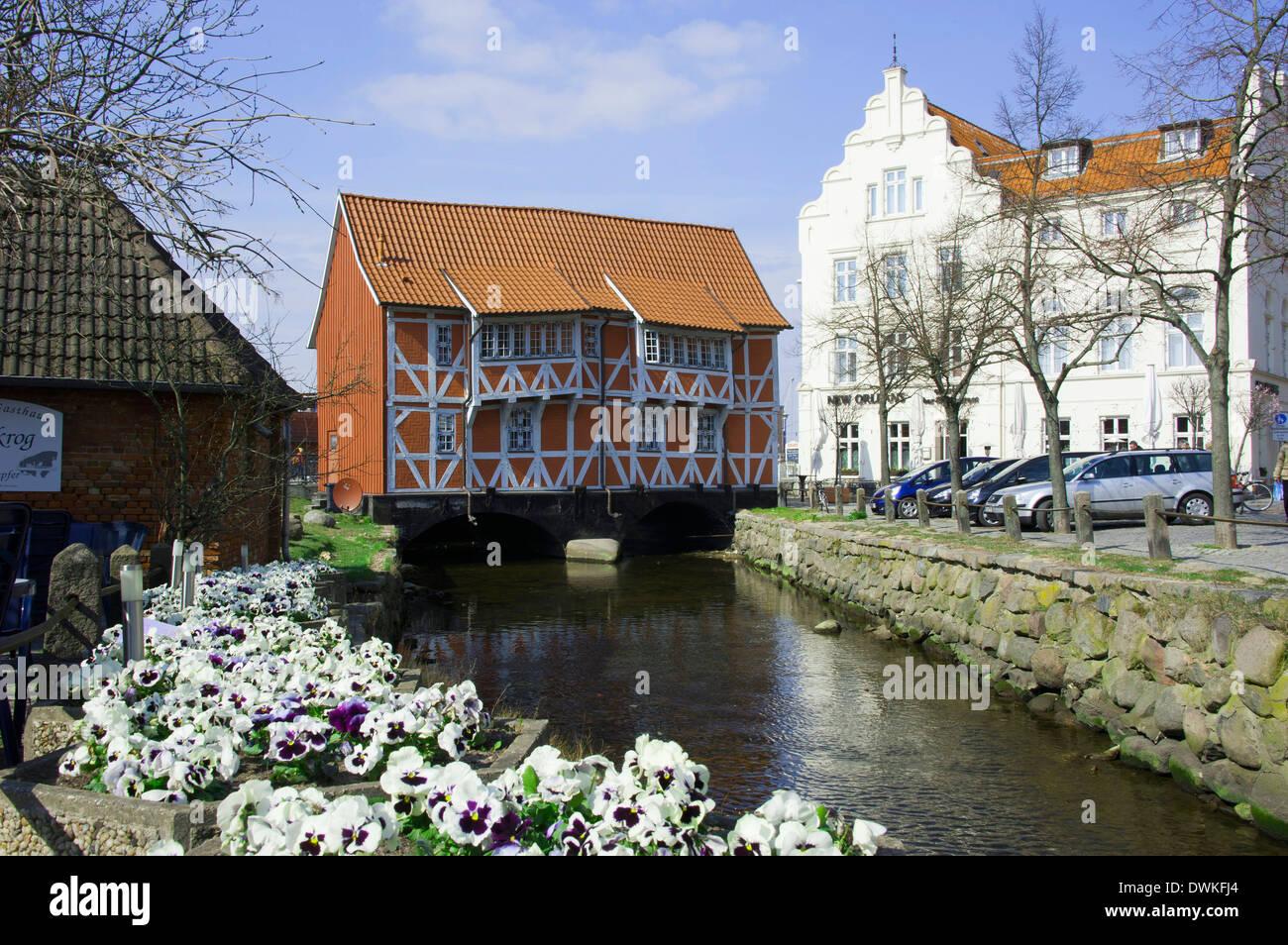 Gewolbe, Wismar - Stock Image