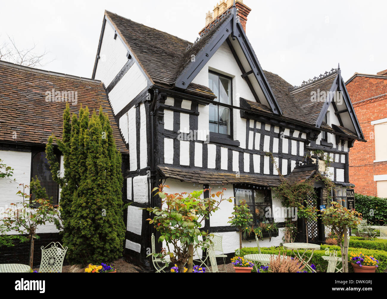Smallwood Lodge tearooms in medieval timbered building where Anne Boleyn once stayed in town. Newport, Shropshire, West Midlands, England, UK, Britain - Stock Image