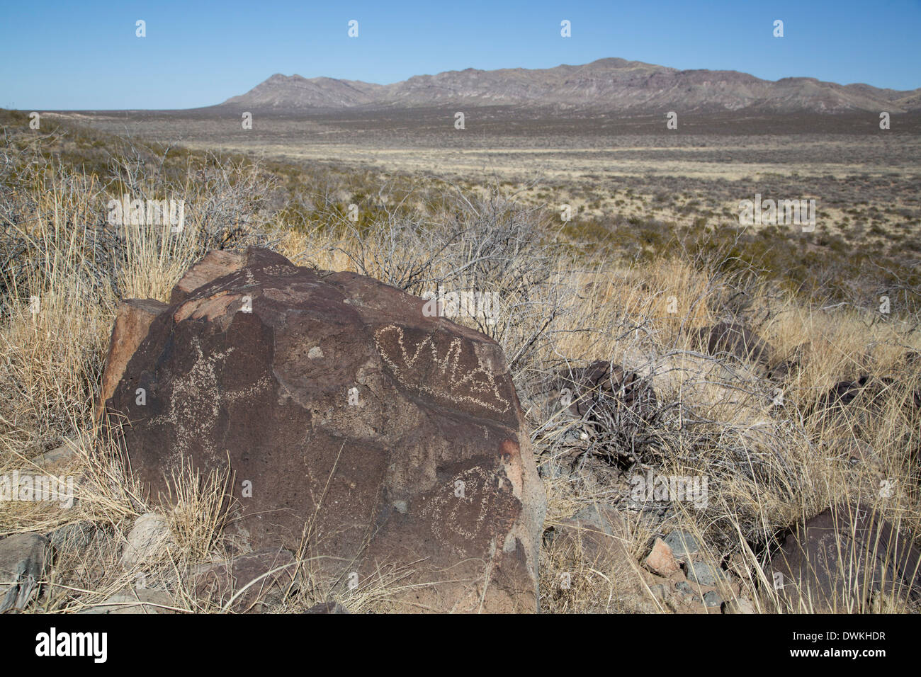 Bureau of Land Management, Three Rivers Petroglyph Site, carvings created by the Jornada Mogollon people, New Mexico - Stock Image