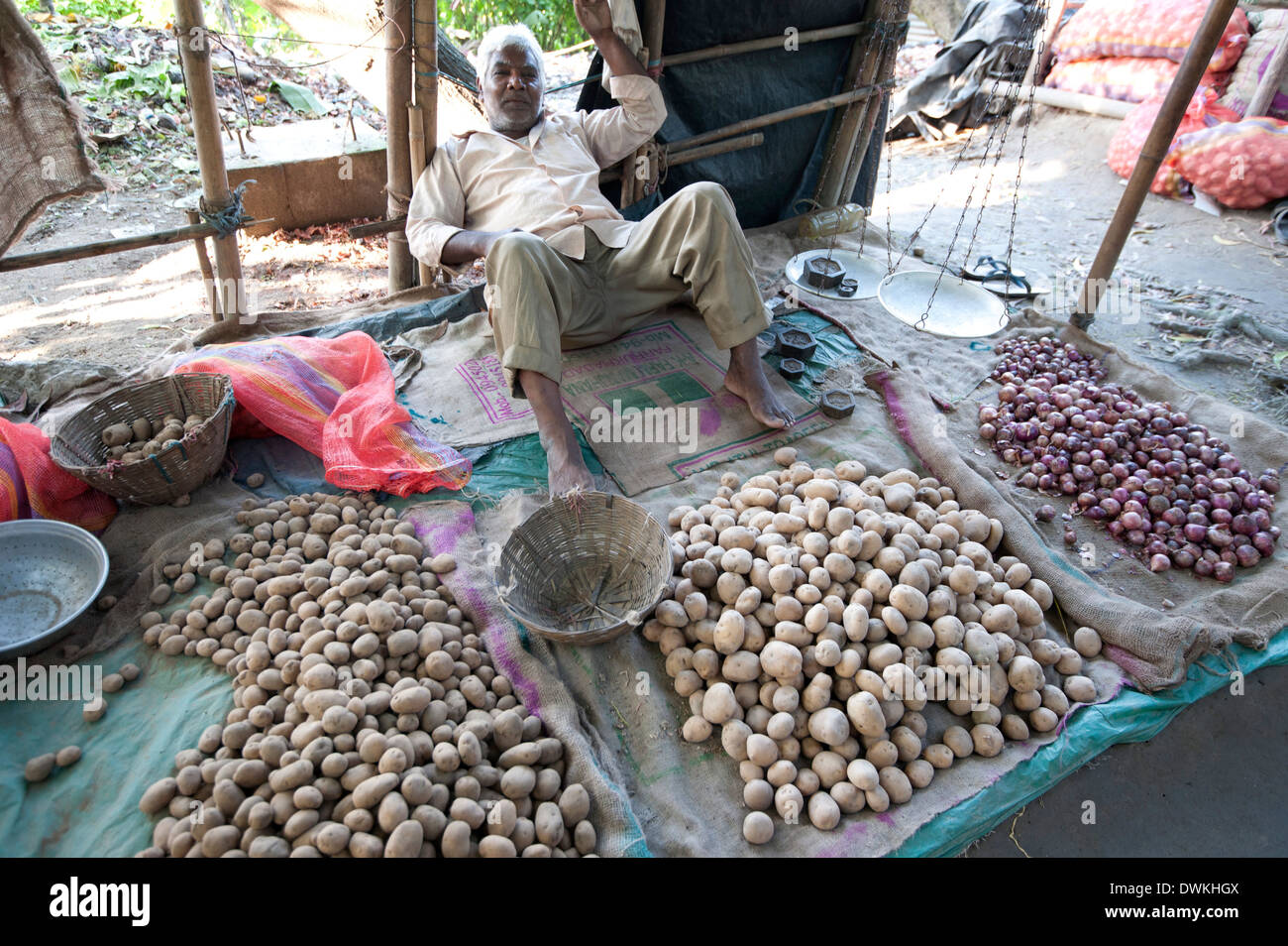 Aloo wallah (potato seller) relaxing with his locally grown potatoes at his market stall, Guwahati, Assam, India, Asia - Stock Image