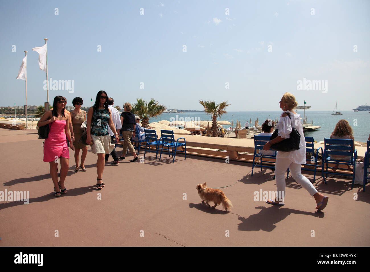 La Croisette, Cannes, Cote d'Azur, Alpes Maritimes, Provence, French Riviera, France, Mediterranean, Europe - Stock Image