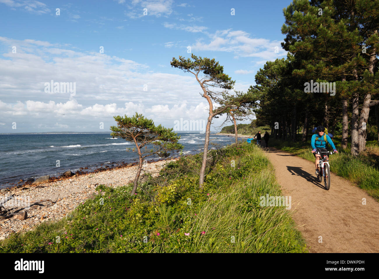 Hornbaek beach, Hornbaek, Zealand, Denmark, Europe Stock Photo