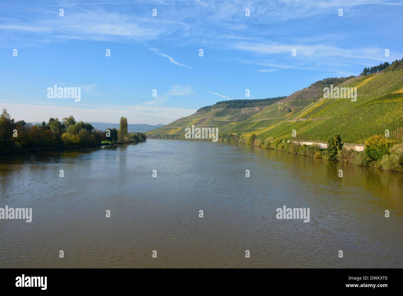 Moselle river valley vineyards landscape blue sky Germany Mosel Flusslandschaft Mosellandschaft Weinberge blauer Himmel Stock Photo