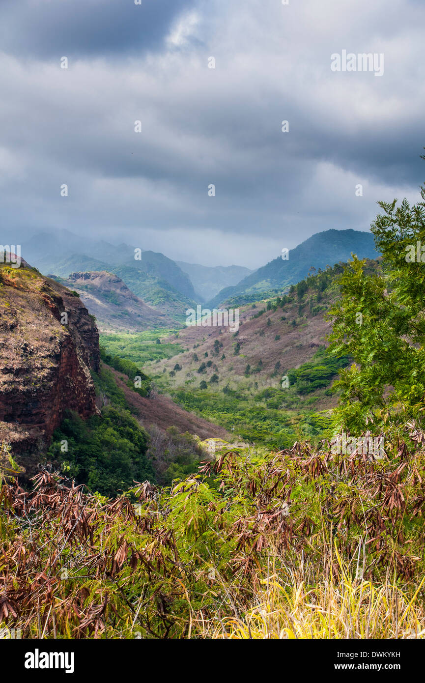 Hanapepe Valley lookout, Kauai, Hawaii, United States of America, Pacific - Stock Image