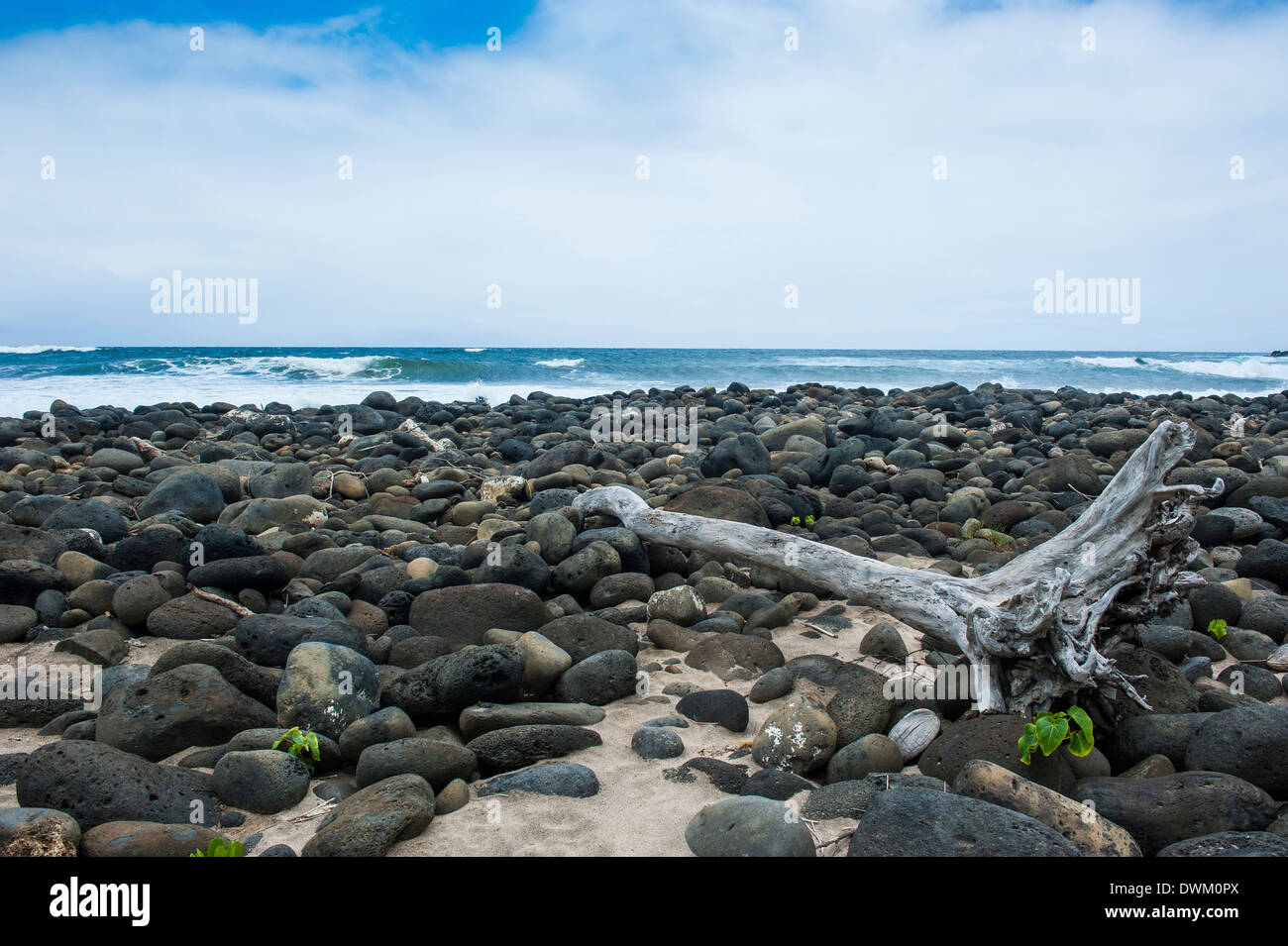 Huge pebbles on the Halawa beach in Halawa Bay on the island of Molokai, Hawaii, United States of America, Pacific - Stock Image