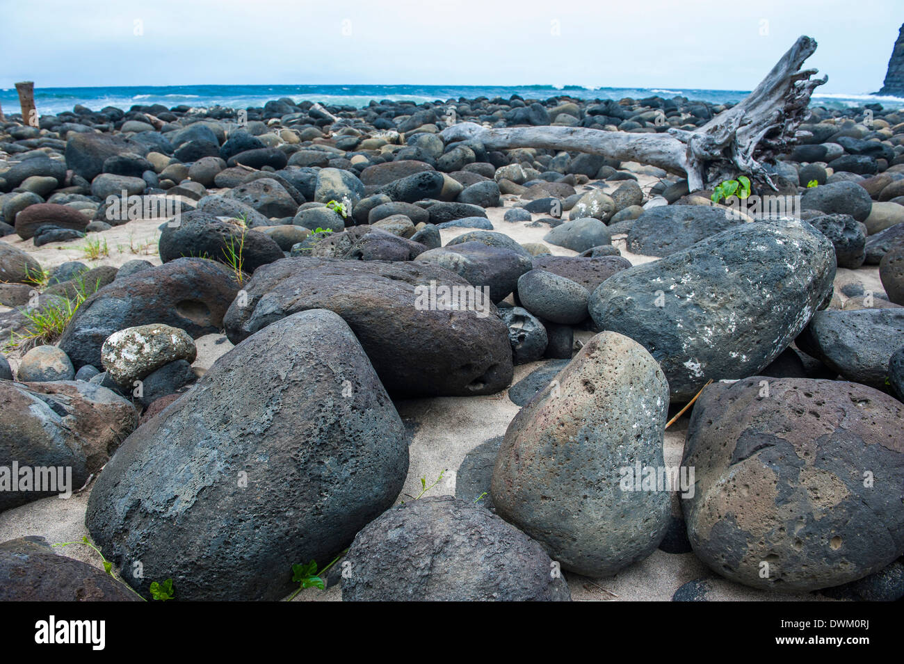 Huge pebbles on Halawa Beach in Halawa Bay on the island of Molokai, Hawaii, United States of America, Pacific - Stock Image