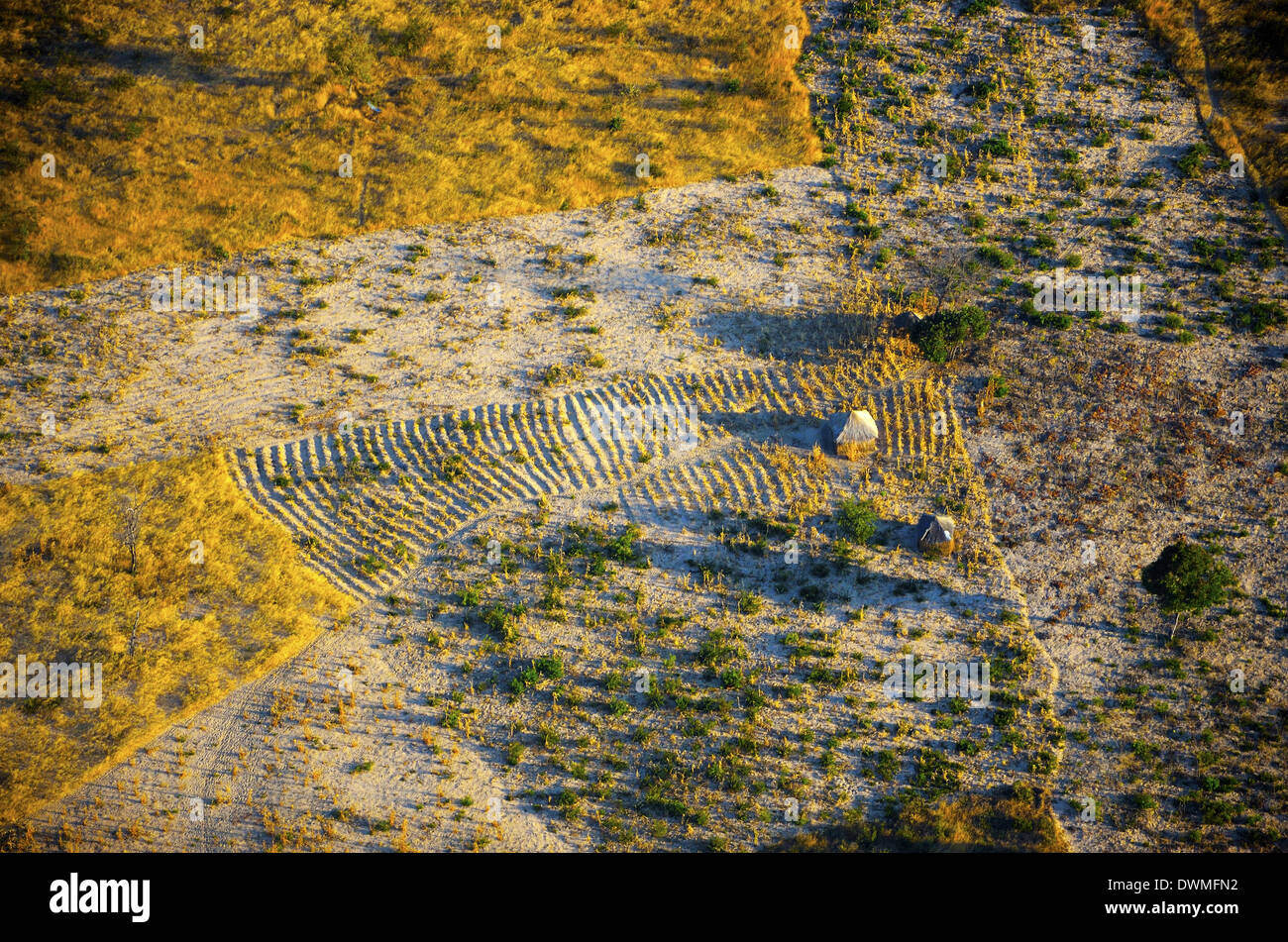 Aeriel view of fields near Cuito Cuanavale, Angola. - Stock Image