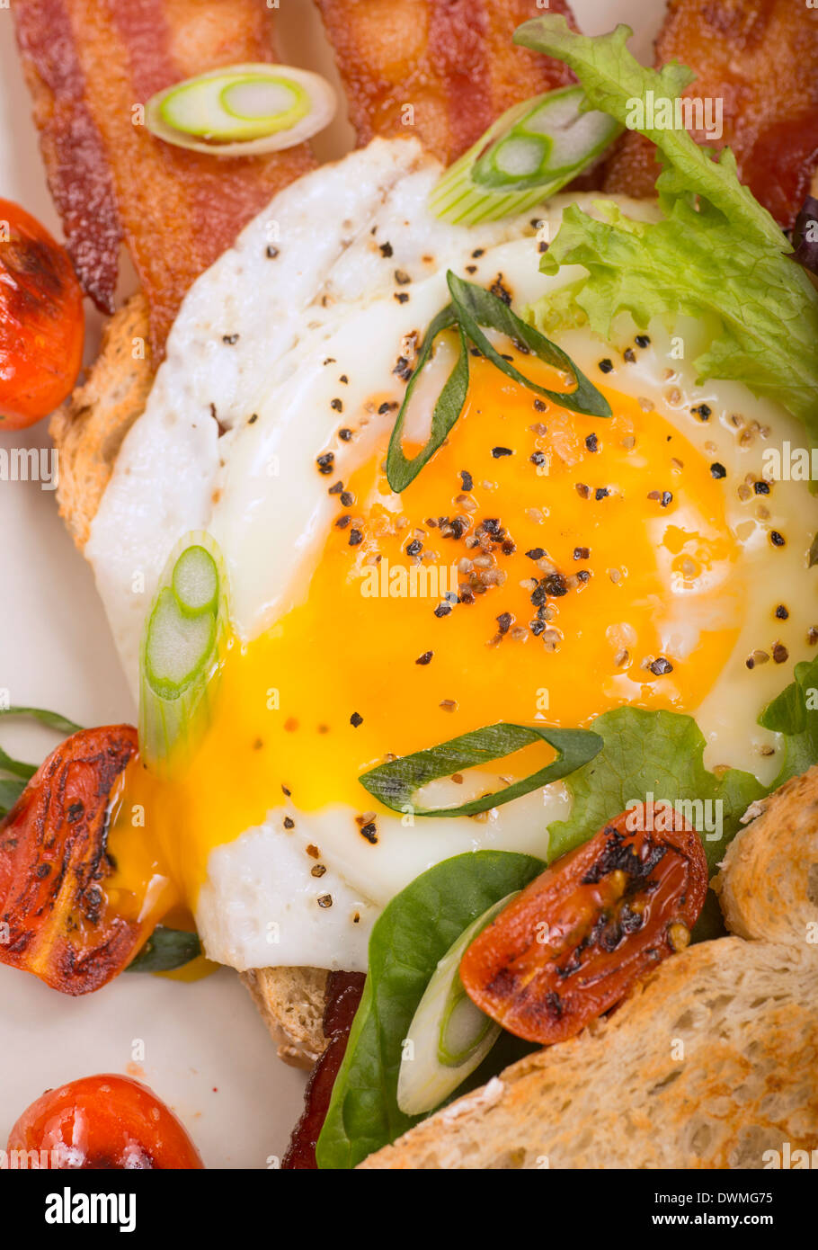 Delicious sunnyside up egg served on toast and bacon with grilled cherry tomatoes - Stock Image