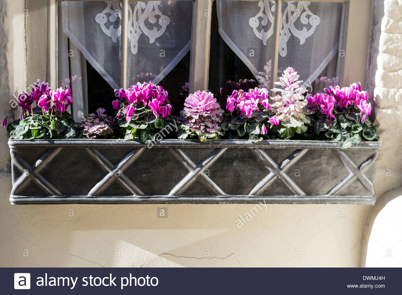 Decorative lead window box - Stock Image