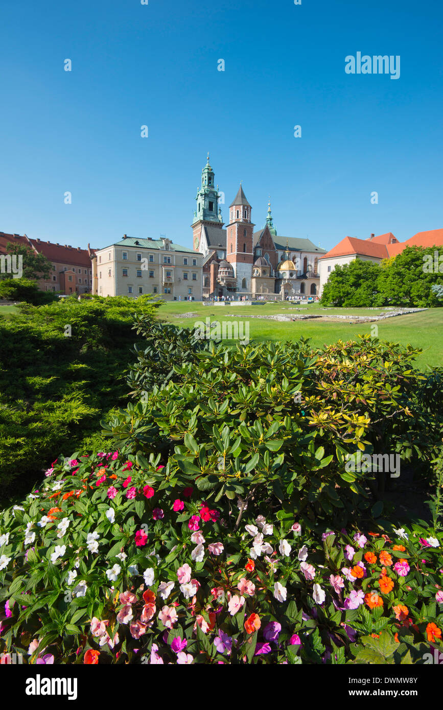Wawel Hill Castle and Cathedral, UNESCO World Heritage Site, Krakow, Malopolska, Poland, Europe - Stock Image
