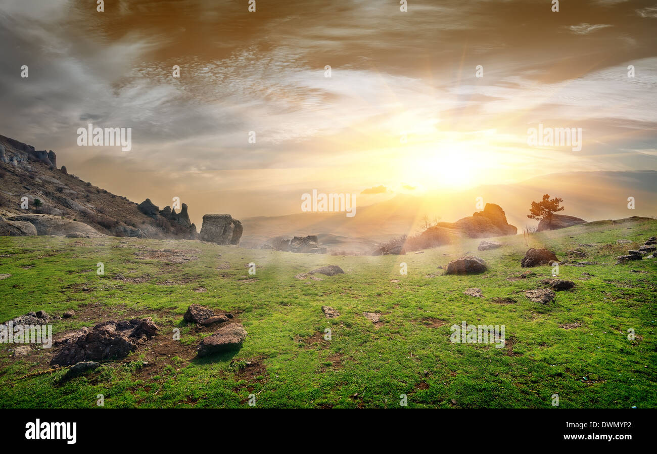 Stony rocks on a meadow at sunrise - Stock Image