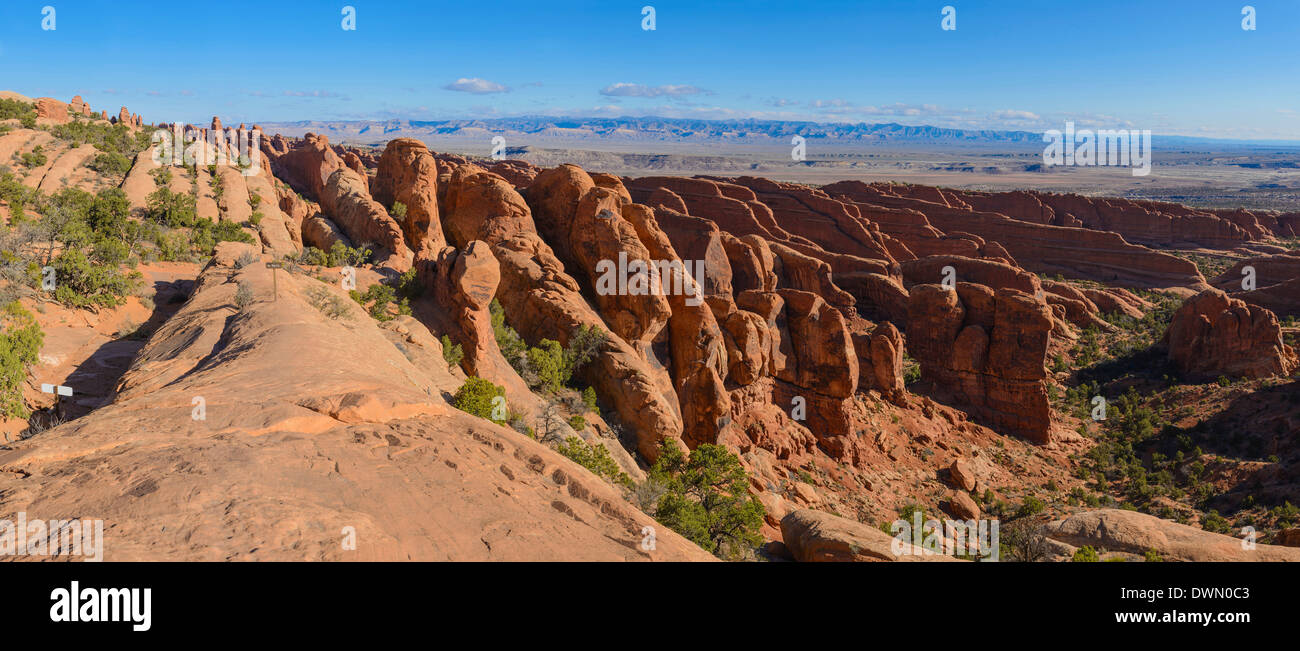 Sandstone Fins, rock formations, Devils Garden, Arches National Park, Utah, United States of America, North America - Stock Image