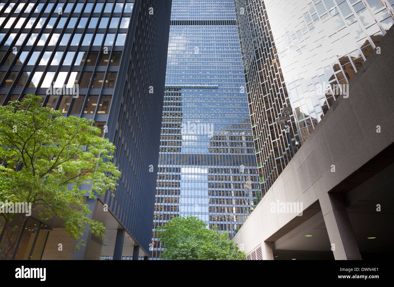 Looking up at the high rise buildings of the business district in down-town Toronto. - Stock Image