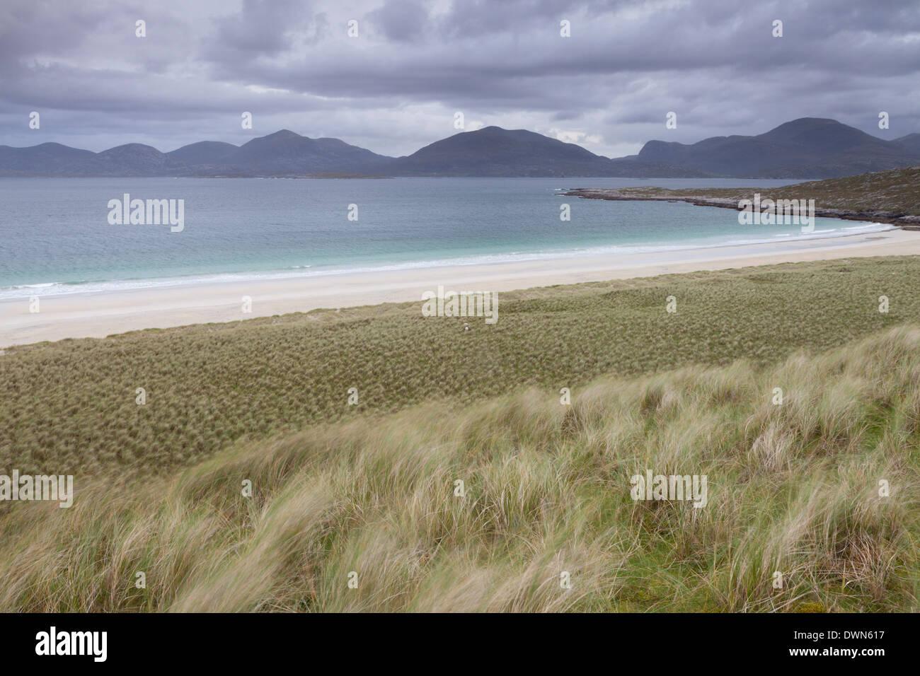 The stunning dunes and beach at Luskentyre, Isle of Harris, Outer Hebrides, Scotland, United Kingdom, Europe - Stock Image