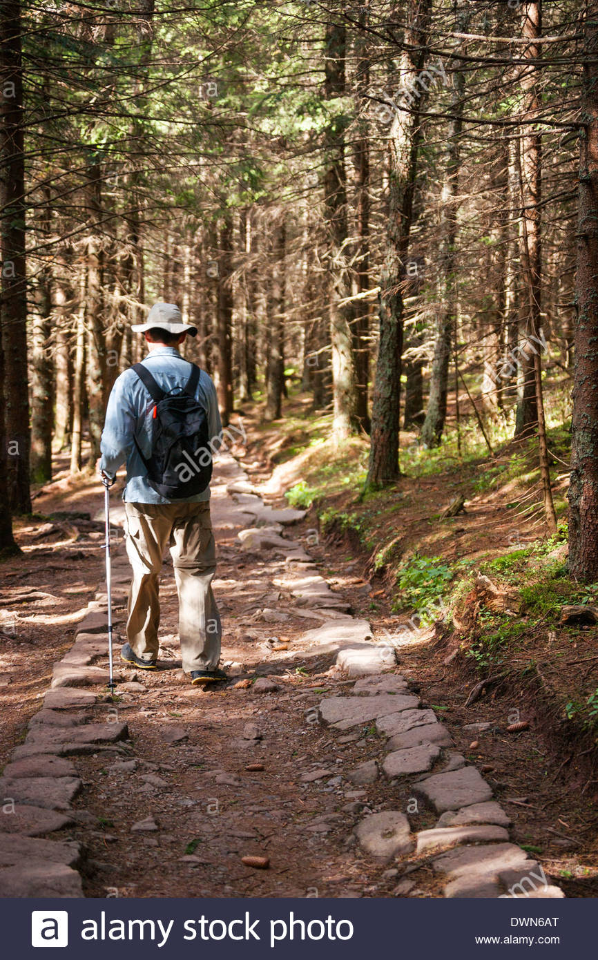 Man hiking a groomed trail in High Tatra Mountains, Tatra National Park, Zakopane, Poland, Europe - Stock Image