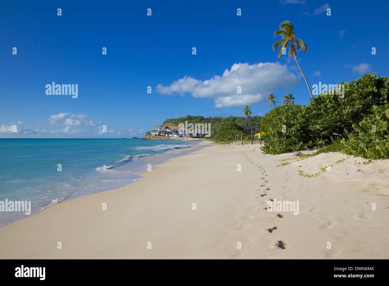 Darkwood Beach, St. Johns, Antigua, Leeward Islands, West Indies, Caribbean, Central America Stock Photo
